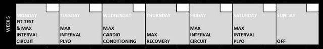 Insanity Week 5 Calendar